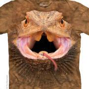 Рептилии и амфибии