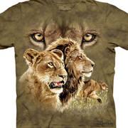 Футболка со львом Find 10 Lions