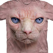 Hairless Pussycat Face