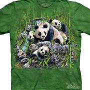 Find 13 Pandas