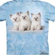 Детская Cloud Kittens