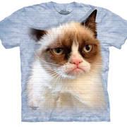 Сувенир / Подарок Grumpy In Blue