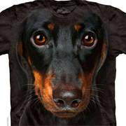 Футболка с собакой Dachshund Face