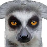 Футболка с изображением животных Big Face Ring Tailed Lemur