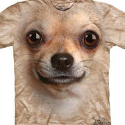 Chihuahua Face