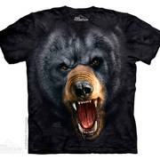 Aggressive Nature Black Bear