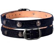 Buffalo Nickel Leather Belt