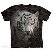 White Tiger Reflection