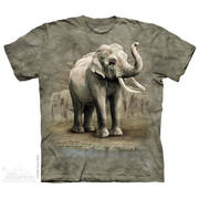 Футболка Asian Elephants