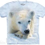 Футболка с медведем Polar Bear Cub