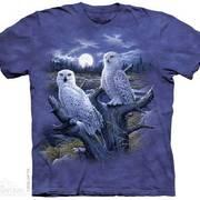 Футболка с изображением птиц Snowy Owls