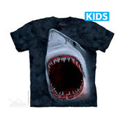 Shark Bite Kids