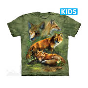 Red Fox Collage Kids