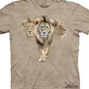 Lion Pack Kids - Clearance