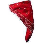 Red Paisley Cloth Face Mask
