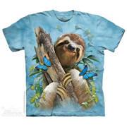 Sloth & Butterflies