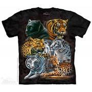 Футболка с коллажем про животных Big Cats