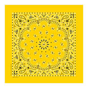 Lemon Yellow Paisley Bandannas