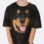 Big Face Rottweiler Puppy Kids
