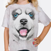 Big Face Siberian Husky Puppy Kids