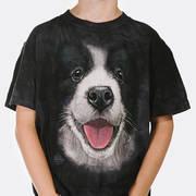 Big Face Border Collie Puppy Kids