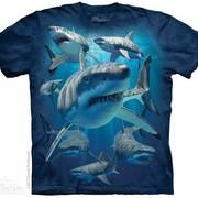 Футболка с акулой Great Whites