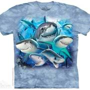 Футболка с акулой Sharks Selfie