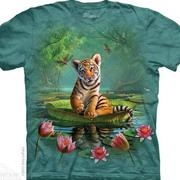 Tiger Lily Kids