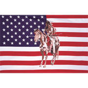 Флаг Индеец на лошади