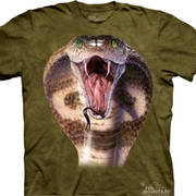 Футболка с картинкой рептилии/амфибии Cobra