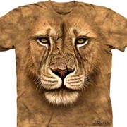 Футболка со львом Lion Warrior
