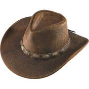 Australian Brown