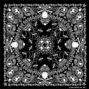 Black Paisley Skull